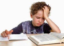 Как развивать детскую память и ум ребенка