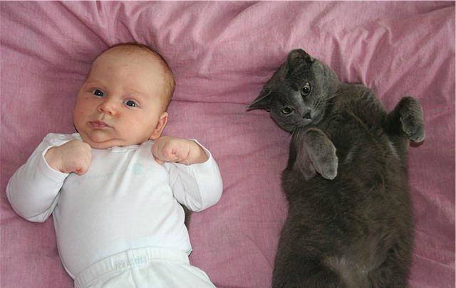 Как помочь уснуть новорожденному ребенку?