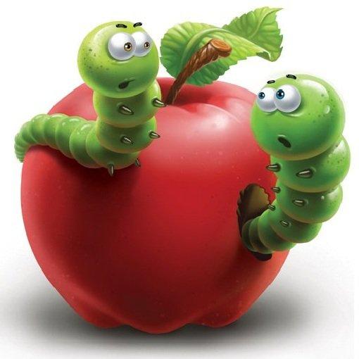 Ревность у гусениц к одному яблоку.