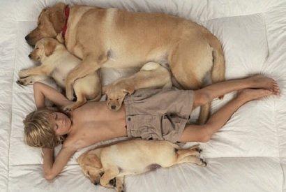Почему для ребенка так важна собака в доме
