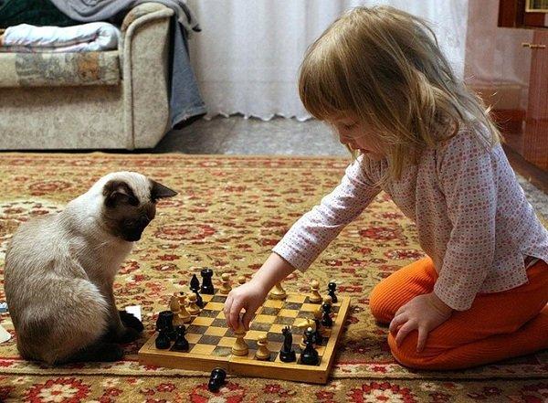 Ребенок и котенок в доме
