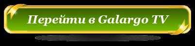 Что такое Галарго ТВ