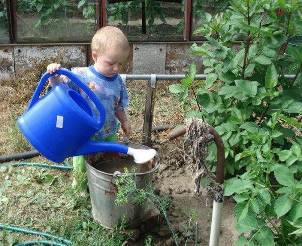 Огород для ребенка игра и развитие