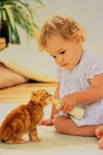 Да или нет ребенку мы чаще говорим?