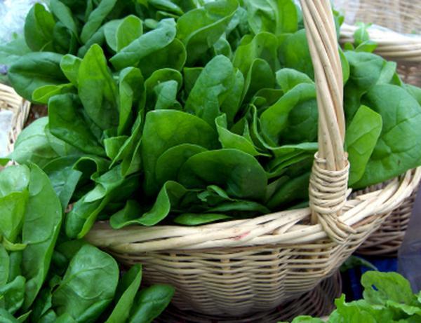 Самые полезные продукты питания - шпинат