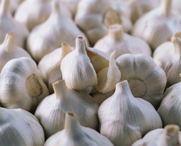 Самые полезные продукты питания - чеснок