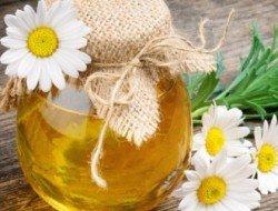 Полезные свойства меда по видам