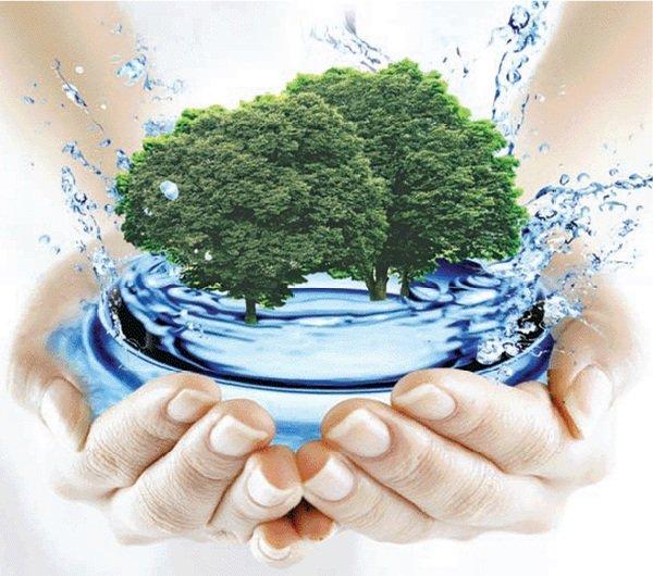 Способы проверить качество воды в домашних условиях.