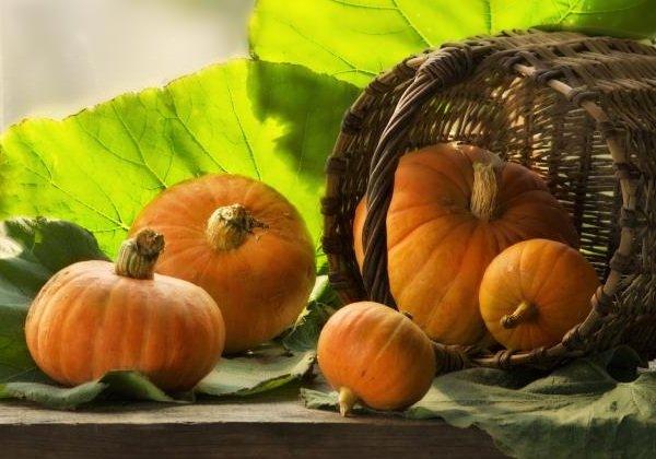 Самые полезные фрукты, овощи и ягоды зимой - Тыква.