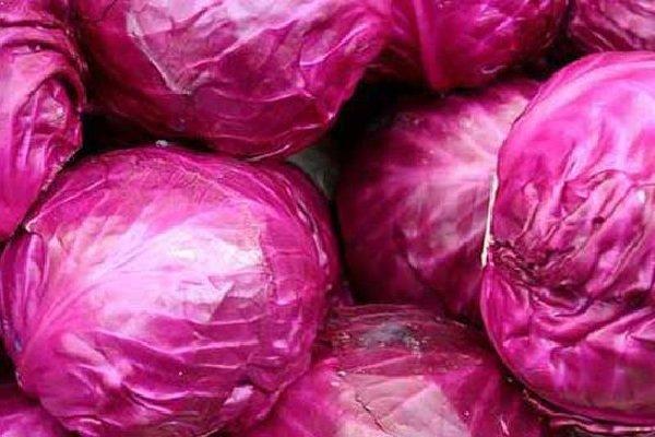Самые полезные фрукты, овощи и ягоды зимой - Кочанная капуста.