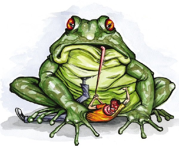 Пусть вас не давит жаба!