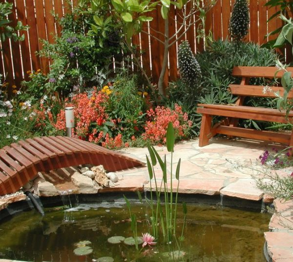 Как сделать пруд на дачном участке и обустроить его?