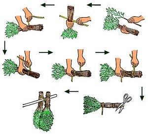 Как заготовить веники для бани правильно