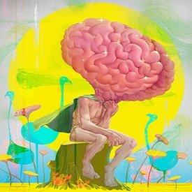 Работать мозгами или думать головой
