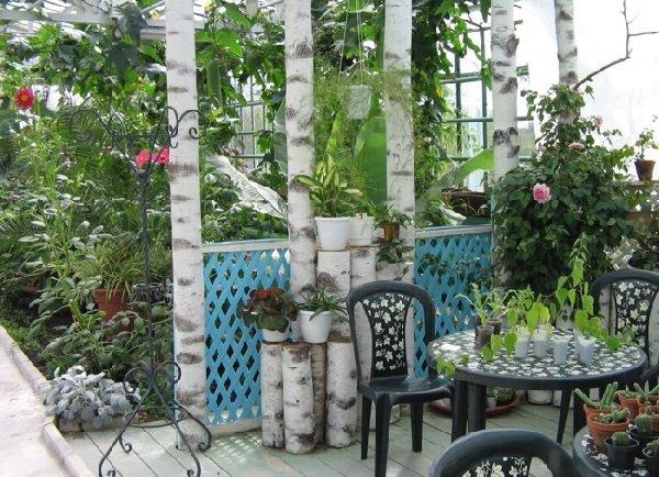 Зимний сад на загородном участке