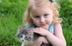 Ребенок просит котенка