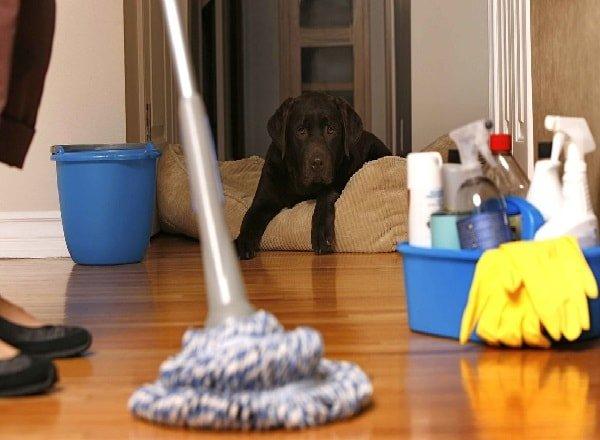 Как избавиться от беспорядка в квартире?