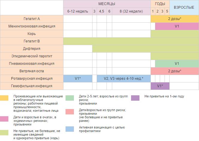 Календарь прививок детям и взрослым в случае эпидемии