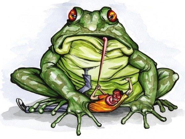 Зависть жаба давит