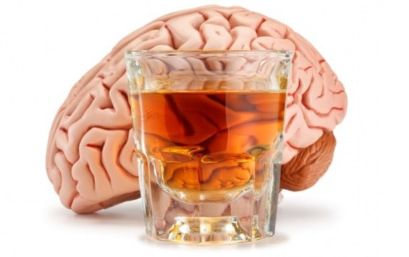 Алкоголь убивает мозг.