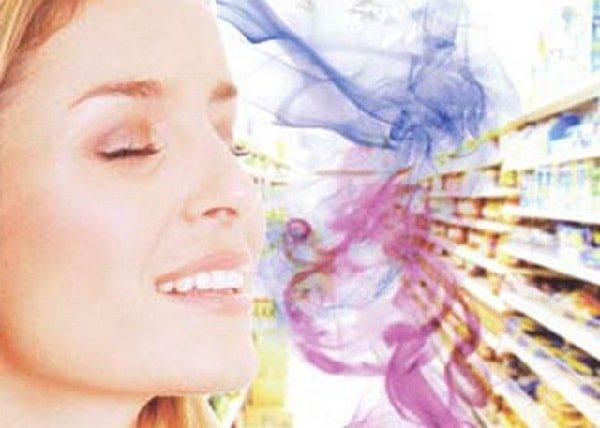 Как запах управляет нашим поведением?