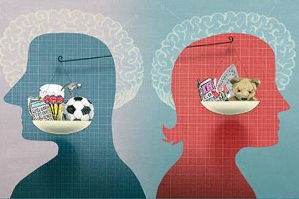 Различия в строении головного мозга женщин и мужчин