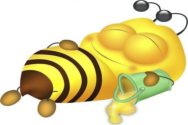 Можно ли детям есть мед?