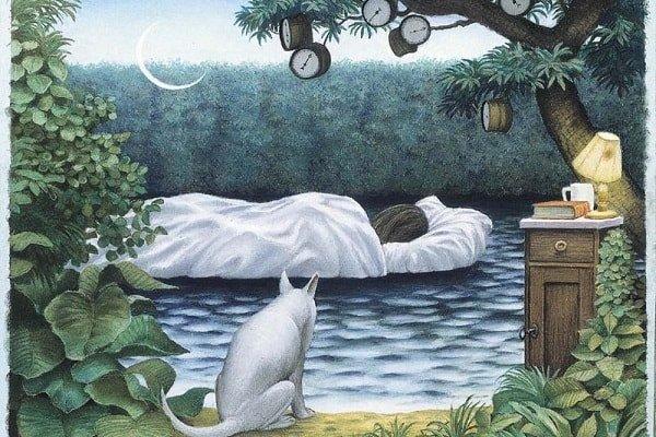 Сновидение – это мистика или особое состояние мозга?