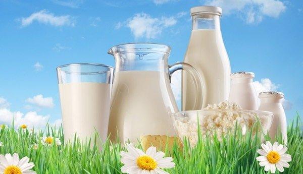 Молоко необходимо в нашем рационе?