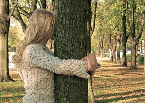 Какие деревья от чего лечат в народной медицине.
