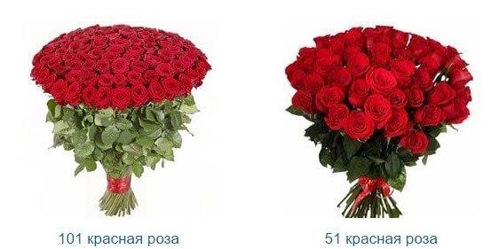 Красные розы и их значение.