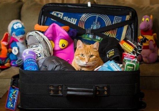 Собираем чемодан в отпуск и убираем лишнее!
